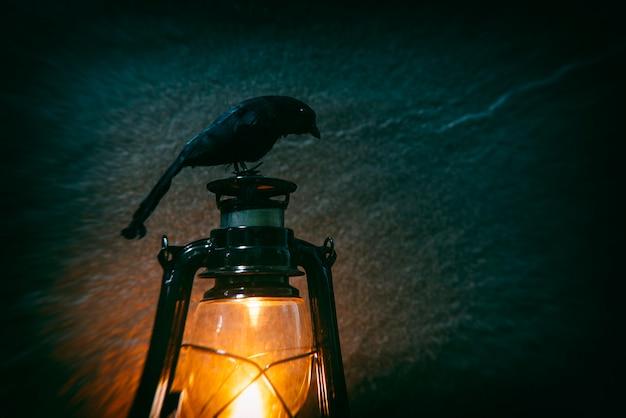 Wrona siedzi na starej latarni światła w nocy i ciemności Premium Zdjęcia