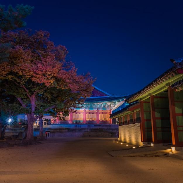 Wśrodku Azjatykciego Krajowego Pałac W Nighttime Premium Zdjęcia