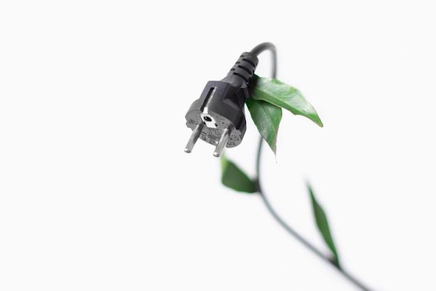 Wtyczka Z Zielonymi Liśćmi Do Gniazdka Na Białym Tle Z Miejsca Kopiowania. Zdjęcie Koncepcyjne Ekologii, Przyjazne Dla środowiska. Premium Zdjęcia