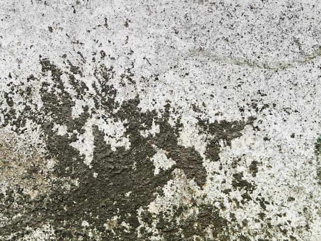 Wyblakły tekstury ścian betonowych z czarnym porostem Darmowe Zdjęcia