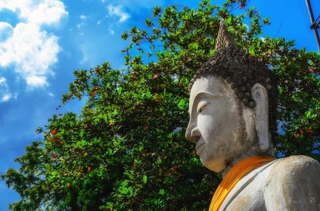 Wyrównywać Buddha Statuy Przy Watem Yai Chaimongkol Ayutthaya, Bangkok, Tajlandia Premium Zdjęcia