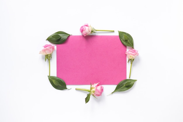 Wysokiego kąta widok kwiaty i liście otacza puste miejsce menchie tapetują na biel powierzchni Darmowe Zdjęcia