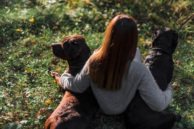 Wysokiego kąta widok żeński właściciela obsiadanie z jej dwa psami w trawie przy parkiem Darmowe Zdjęcia