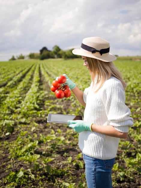 Z Ukosa Kobieta Trzyma Niektóre Pomidory Darmowe Zdjęcia