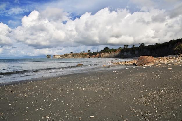 Zachodnie wybrzeże na południowej wyspie, nowa zelandia Premium Zdjęcia