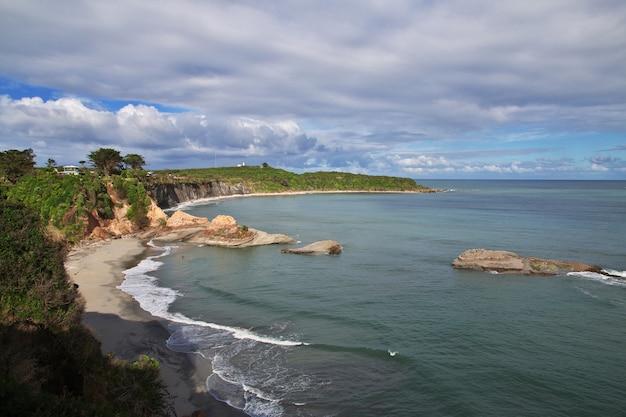 Zachodnie wybrzeże na południowej wyspie w nowej zelandii Premium Zdjęcia