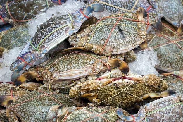 Zachowaj świeży krab na lodzie na owoce morza Premium Zdjęcia