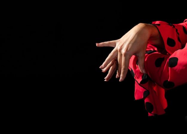 Zakończenie Flamenca Wykonuje Floreo Darmowe Zdjęcia