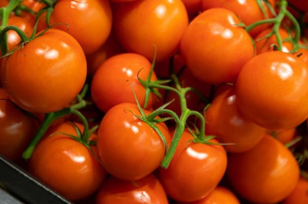 Zakończenie łagodnie Czerwoni Krzak Pomidory W Lug Pudełku Premium Zdjęcia