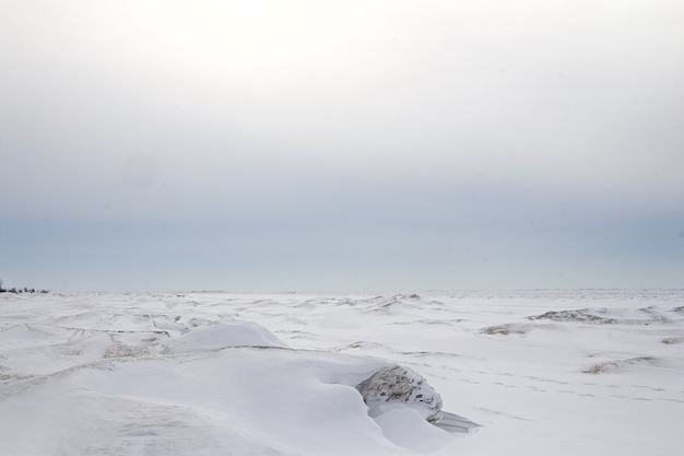 Zamarznięte Jezioro W Kanadzie. Darmowe Zdjęcia