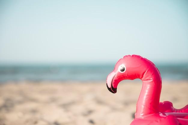 Zamknij Się Nadmuchiwany Pierścień Pływać Flamingo Na Plaży Darmowe Zdjęcia