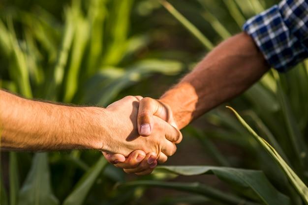Zamknij się uścisk dłoni na zewnątrz Darmowe Zdjęcia