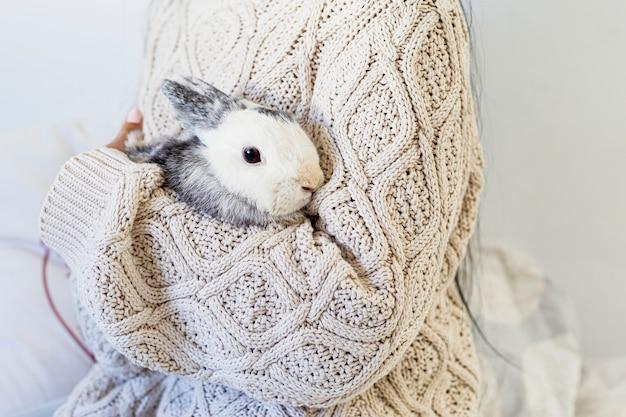Zamyka up piękna młoda kobieta trzyma królika w zima stroju w domu Premium Zdjęcia