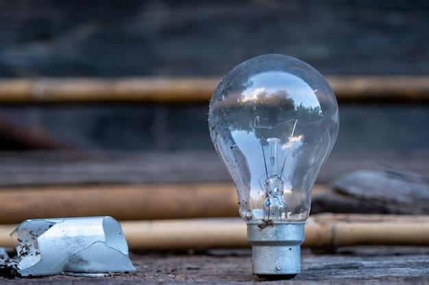 Żarówka stojąca na drewnie - koncepcja oszczędzania energii i świetny pomysł. Premium Zdjęcia