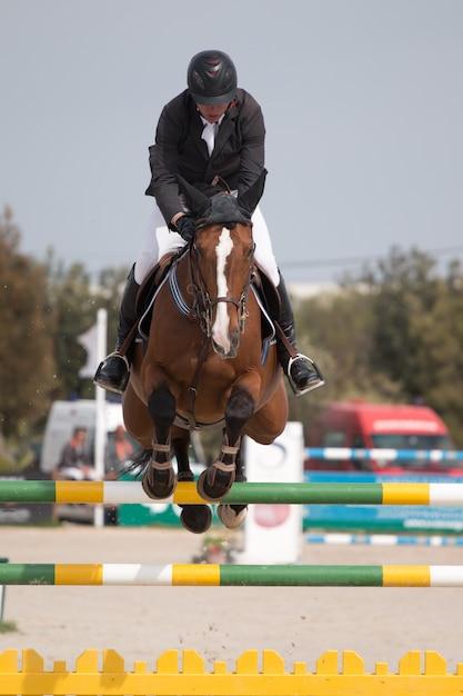 Zawody W Skokach Przez Konie Premium Zdjęcia