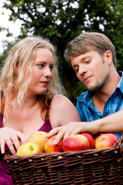 Zbiór, Jedzenie Jabłek Premium Zdjęcia