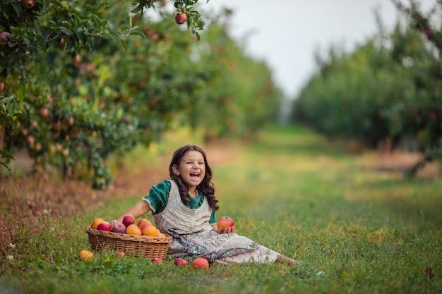 Zbiór W Sadzie Jabłkowym. Dziewczynka W Zielonej Sukience śmiejąc Się Wesoło Siedzi Przy Wiklinowym Koszu Z Dojrzałymi Jabłkami. Premium Zdjęcia