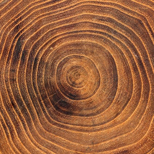 Zbliżenie Drewnianych Słojów Rocznych Darmowe Zdjęcia