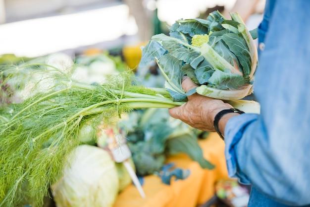 Zbliżenie Męskiej Ręki Trzymającej Koperek I Warzyw Brassica Romanesco Darmowe Zdjęcia