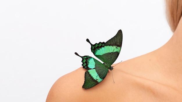 Zbliżenie Motyla Na Ramieniu Darmowe Zdjęcia
