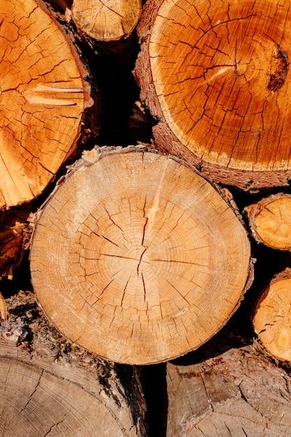 Zbliżenie Plasterka Drewniany Krzyż Notuje Drzewną Sekcję żółtego Brąz Premium Zdjęcia
