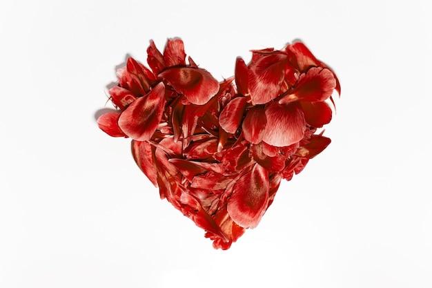 Zbliżenie: Płatki Kwiatów W Kształcie Serca, Bujna Lawa Koloru, Na Białym Tle. Premium Zdjęcia
