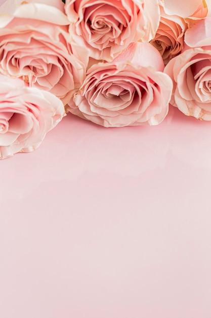 Zbliżenie Walentynki; Koncepcja Dnia S Z Różami Darmowe Zdjęcia
