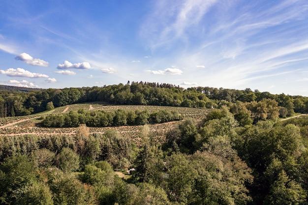 Zdjęcia Lotnicze Z Górskiego Krajobrazu Pokrytego Drzewami Darmowe Zdjęcia