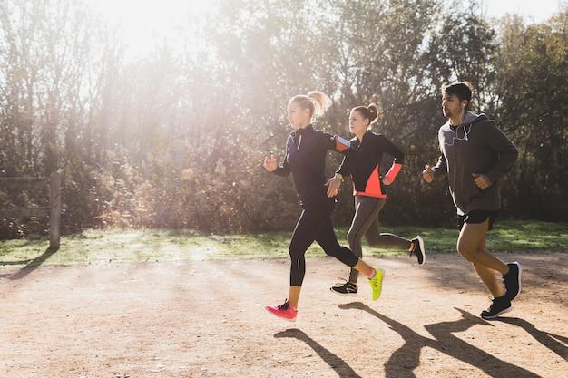 Zdrowi sportowcy działające w słoneczny dzień Darmowe Zdjęcia