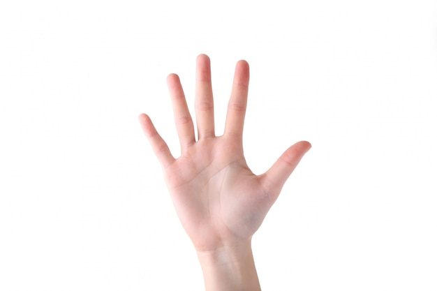 Żeński Ręka Gest Odizolowywający Na Białym Tle Premium Zdjęcia