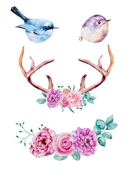 Zestaw Clipartów Ptaki I Rogi Akwarela Premium Zdjęcia