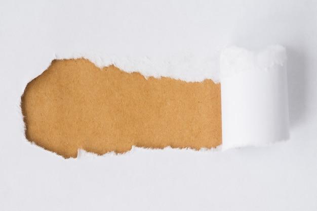 Zgrywanie papieru odsłaniającego karton Darmowe Zdjęcia