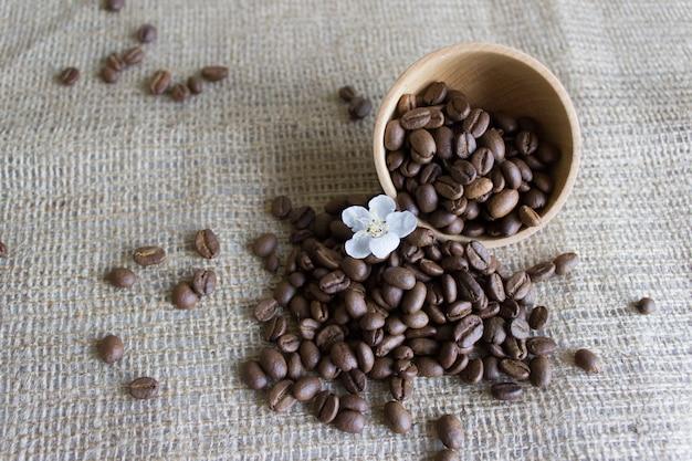 Ziarna kawy o wysokim aromacie, kwiat wiśni Premium Zdjęcia