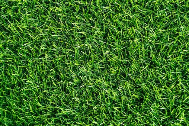 Zielona trawa. tekstura tło naturalne. świeża wiosna zielona trawa. - obraz Premium Zdjęcia