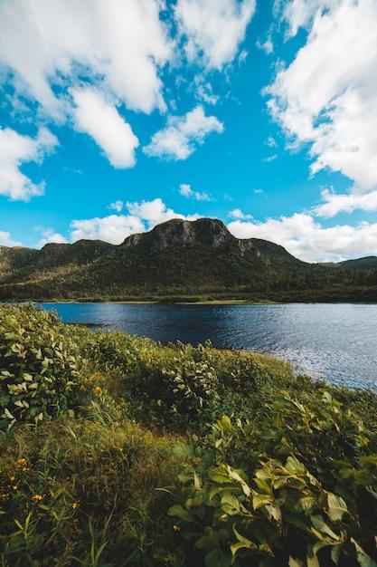 Zielone Góry I Błękitne Niebo Darmowe Zdjęcia