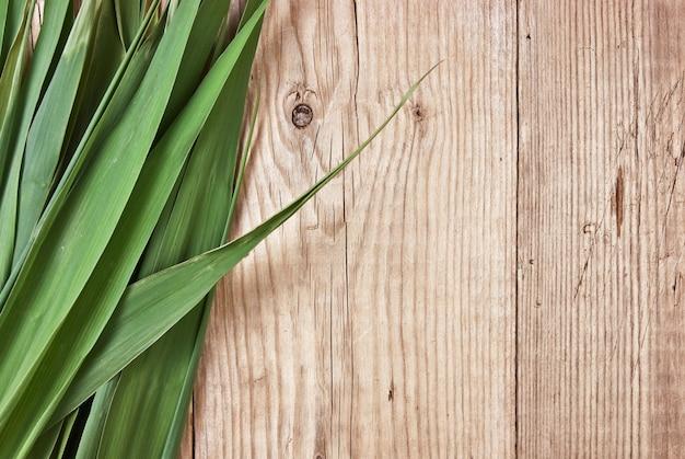 Zielone Liście Na Tle Drewnianej ścianie Premium Zdjęcia