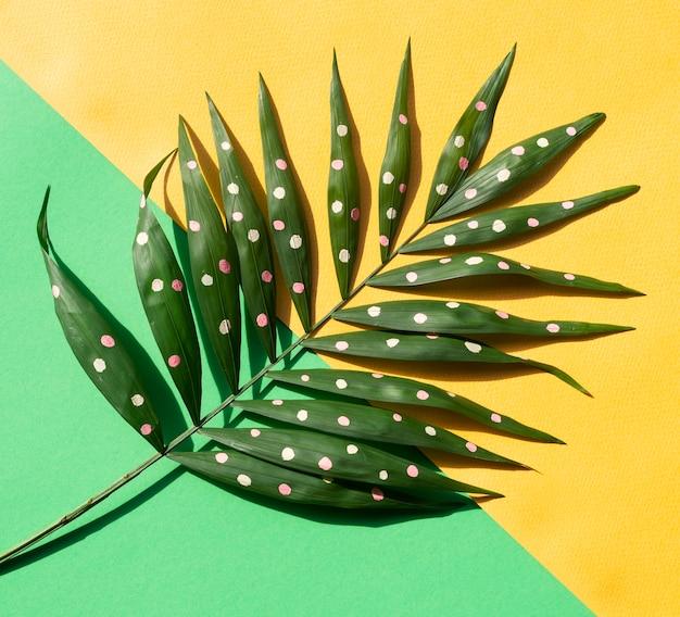 Zielone Malowane Liście Paproci Tropikalnej Na Tle Kontrastowym Darmowe Zdjęcia