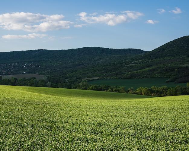 Zielone Pole Z Chmurnym Porannym Niebem Ze Wzgórzami Darmowe Zdjęcia