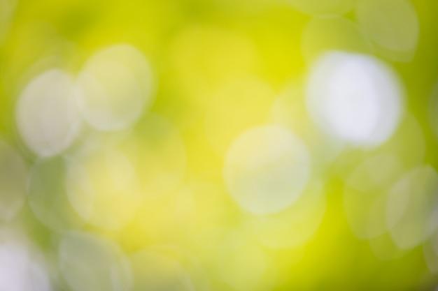 Zielony Bokeh Na Rozmycie Natury. Element Projektu. Darmowe Zdjęcia