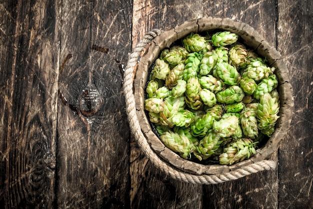 Zielony Chmiel Do Piwa W Drewnianym Wiaderku Premium Zdjęcia