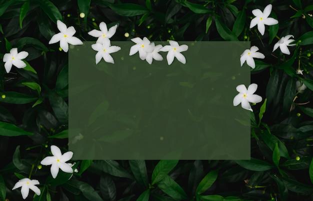 Zielony Papier Na Liściach Z Białymi Kwiatami Premium Zdjęcia