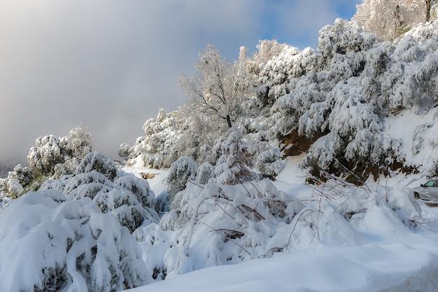 Zima Krajobraz Na Górze W Ranku Premium Zdjęcia