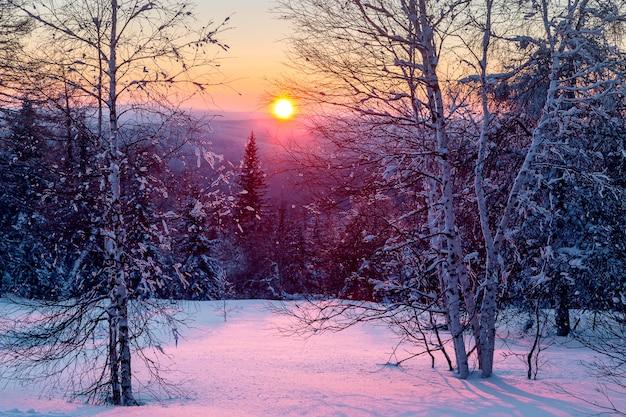 Zima W Górach. Premium Zdjęcia
