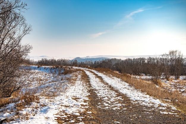 Zimowa droga prowadząca do bajecznego zimowego lasu Premium Zdjęcia