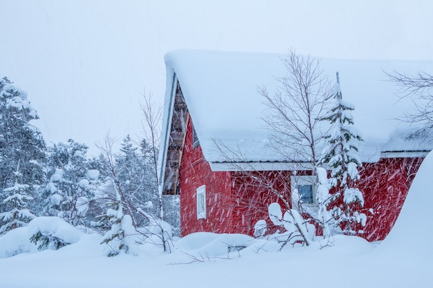 Zimowa Finlandia. Gęsty Las I Dużo śniegu. Dom Drewniany Z Czerwonymi ścianami. Opad śniegu Premium Zdjęcia