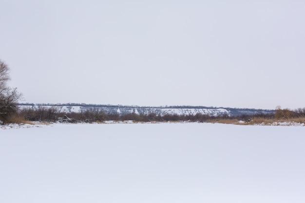 Zimowe Pole Usiane śniegiem Premium Zdjęcia