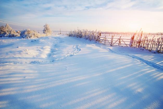 Zimowy Krajobraz Drzew I Ogrodzenia W Szron Premium Zdjęcia