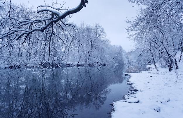 Zimowy Krajobraz Z Rzeką W Lesie. Premium Zdjęcia