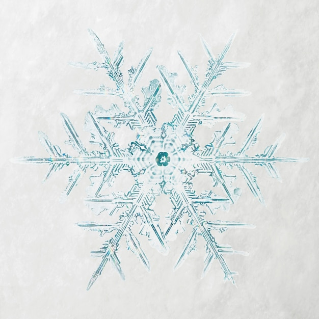 Zimowy Płatek śniegu Fotografia Makro świąteczna Ozdoba, Remiks Fotografii Wilsona Bentleya Darmowe Zdjęcia