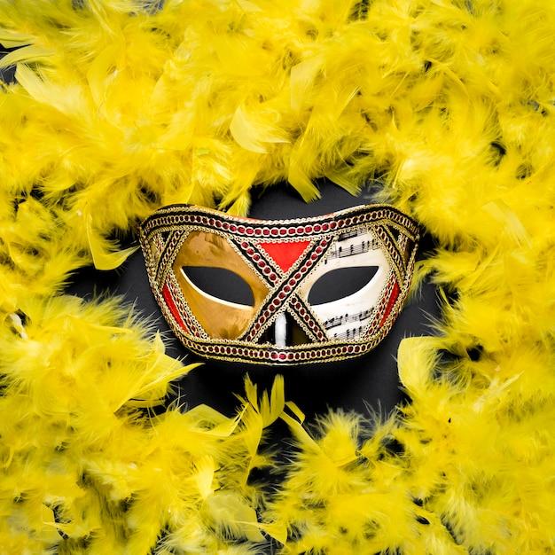Złota Karnawałowa Maska Z żółtym Boa Z Piór Darmowe Zdjęcia